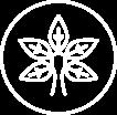 icoon-individuele-begeleiding